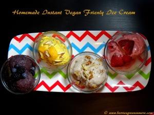 Vegan Friendly Ice Cream
